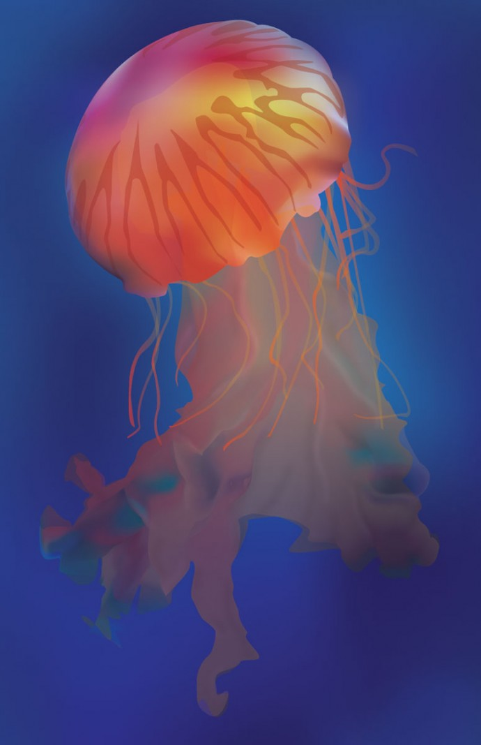 Digital illustration of a multicolored jellyfish.